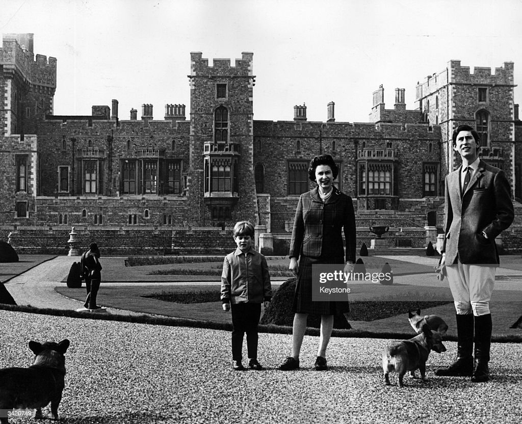 Charles Prince of Wales Queen Elizabeth II and Prince Edward in the grounds of Windsor Castle Berkshire with their corgi dogs