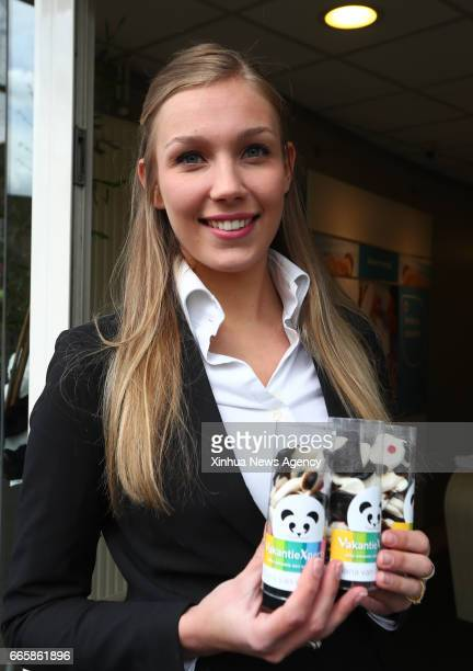 RHENEN April 5 2017 A woman presents pandashaped candies in Rhenen the Netherlands on April 5 2017 The 'Pandasia' at Ouwehands Zoo in the Netherlands...