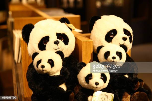 Photo taken on April 5 2017 shows the panda toys sold at Ouwehands Zoo in Rhenen a town in central Netherlands The 'Pandasia' at Ouwehands Zoo in the...
