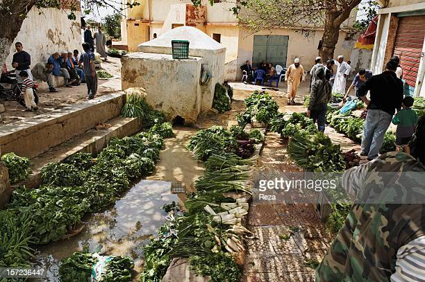 April 8th Town of Kristel Algeria The village of Kristel lies east of Oran The people there live off fishing and agriculture The lands are arable...