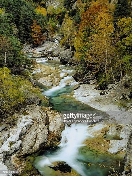 Ara river. Autumn. Ordesa National Park