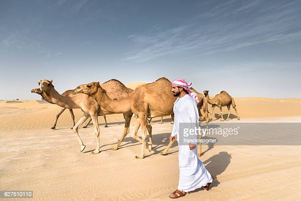 arabic sheik on the desert walking with the camel