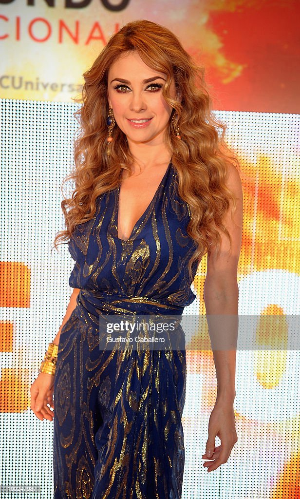 Aracely Arambula attends Telemundo NATPE 2013 Press Conference And Luncheon at Eden Roc Hotel on January 28, 2013 in Miami Beach, Florida.