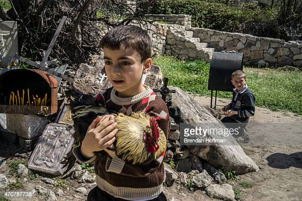 Aram Aslanyan carries a chicken which his family will kill in sacrifice in order to bring good fortune at the sacred site of Surb Saribek on April 19...