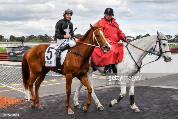 Aramoana ridden by Dwayne Dunn returns to scale after winning the The Resimax Group Plate at Ladbrokes Park Hillside Racecourse on August 23 2017 in...