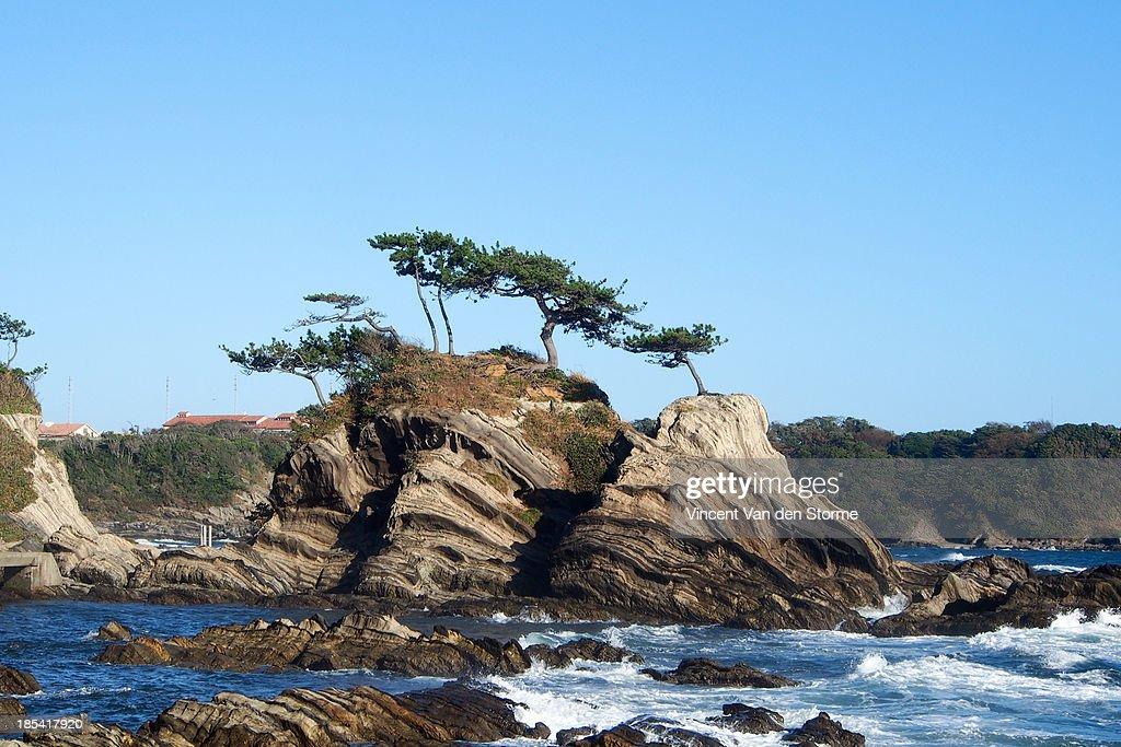 Arasaki Coast