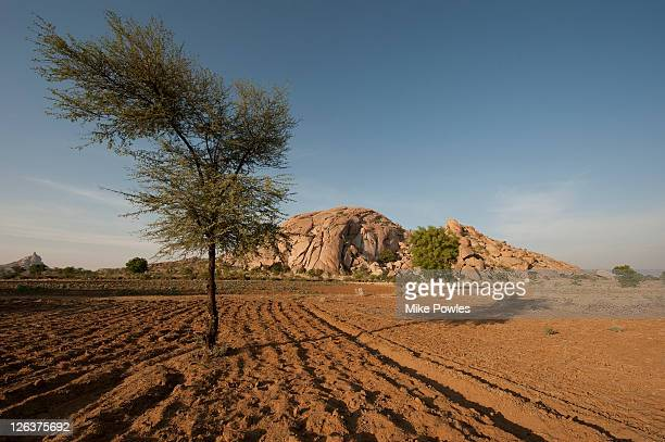 rajasthan draught In rajasthan, some areas have been experiencing very little rains for three years consecutively the plight of people in those affected regions is hard to imagine the worst affected by droughts are the marginal farmers.