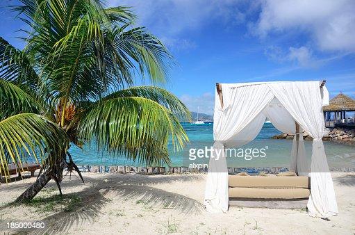 Arbor on tropical beach