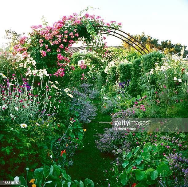 Arbor Rose Path thru Garden
