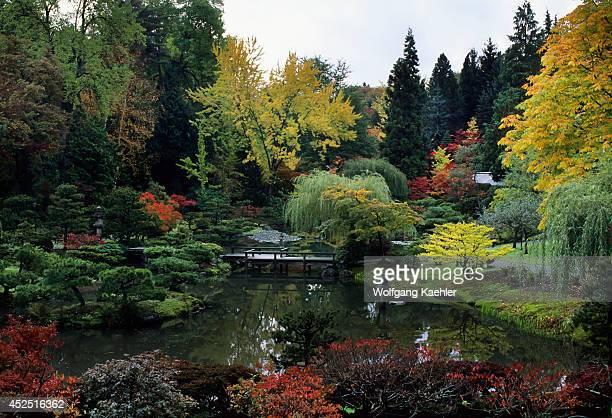 Arboretum Japanese Garden In Fall