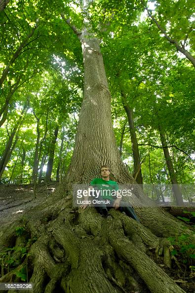 Arborist Todd Irvine sits in the root structure of a White Ash in the Don Valley south of St Clair Monday morning
