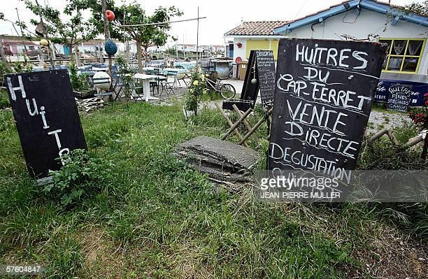 vue d'un panneau d'affichage installe par un conchyliculteur a Arcachon le 13 mai 2006 apres la decision de la prefecture d'interdire la peche...