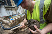 Archaeologist Paw Jorgensen works on a skull that forms part of a collection of bones that were found among the stepped footings of Westminster...