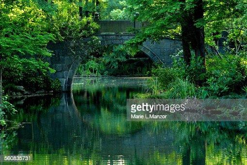 arched bridge reflection