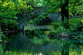 arched bridge reflection