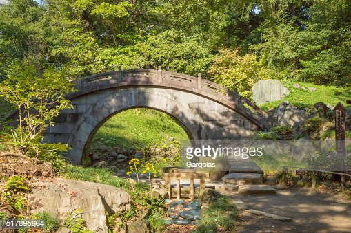 similar images - Japanese Garden Stone Bridge