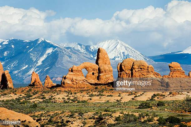 Arches National Park with Mountain Background