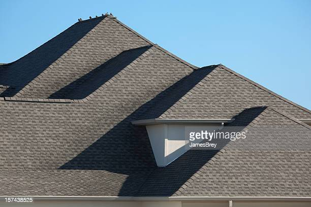 Bardeaux sur le toit avec son architecture asphalte matin Colombe oiseaux