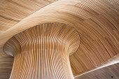 Ceiling details of Welsh Assembly Government Building. Reflecting the forms of a sandy beach.