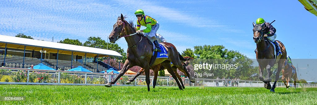 Arctic Flow ridden by Damian Lane wins The Mocha Shop 3YO Maiden Plate at Sportsbet-Ballarat Racecourse on January 25, 2017 in Ballarat, Australia.