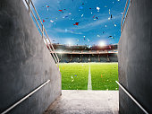 3d rendering arena tunnel with soccer field