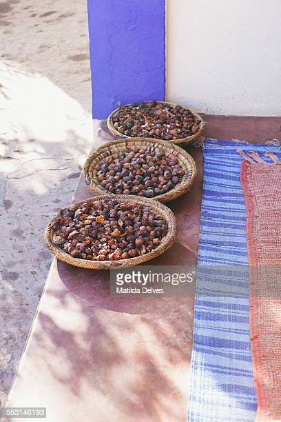 Argan nuts in the Atlas Mountains Morocco