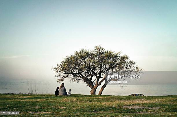 Argentina, Buenos Aires, Teenage girl (14-15) sitting in meadow with her dogs