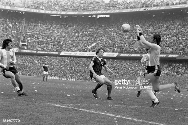 Argentina goalkeeper Hector Rodolfo Baley claims the ball ahead of Scotland's Willie Johnston watched by teammates Rene Houseman and Daniel Passarella