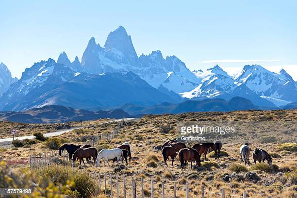 Argentina Patagonia Mount Fitz Roy with horses