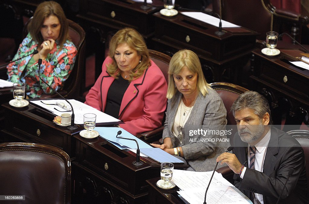 Argentine senator, Daniel Filmus (R), speaks during a session of the Argentine senate in Buenos Aires on February 21, 2013, as they discuss the possibility of an agreement with Iran to establish a truth commission over a terrorist attack that took place in 1994. Eight Iranian nationals are still wanted in connection with the bombing of the Argentine Israelite Mutual Association (AMIA is Spanish), leaving 85 dead and 300 wounded. AFP PHOTO/Alejandro Pagni