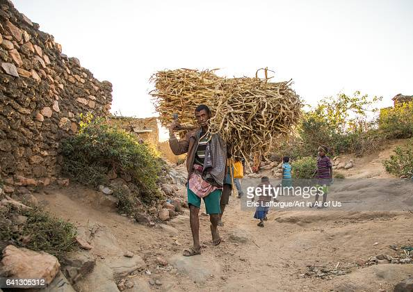 Argoba tribe man carrying a huge bale of fodder on January 12 2017 in Koremi Ethiopia