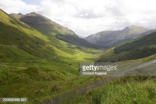 Argyll Forest Park : Foto de stock