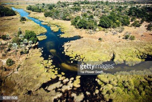 Arial shot of river and savannah.