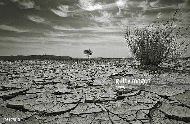 Arid Dry Desert Landscape, Black and White