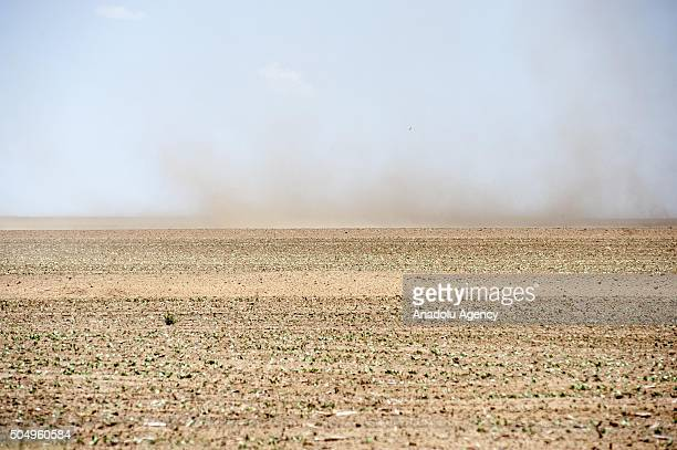 Arid land is seen due to elevated temperature and drought at Lindlay town in Free State South Africa on January 14 2016