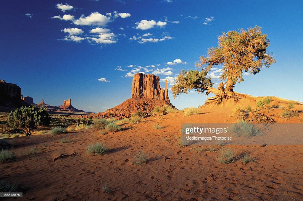 Arid landscape at dusk, Monument Valley Navajo Tribal Park, Arizona, USA