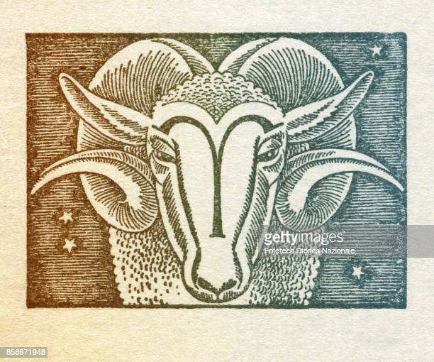 Aries is the first sign of the zodiac of western astrology cardinal and of fire from March 21 to April 19 Colored version of woodcut of 1942 Italy...