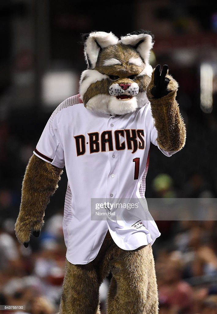 Arizona Diamondbacks mascot D Baxter points at a fan while standing on top of the Philadelphia Phillies dugout at Chase Field on June 27, 2016 in Phoenix, Arizona.