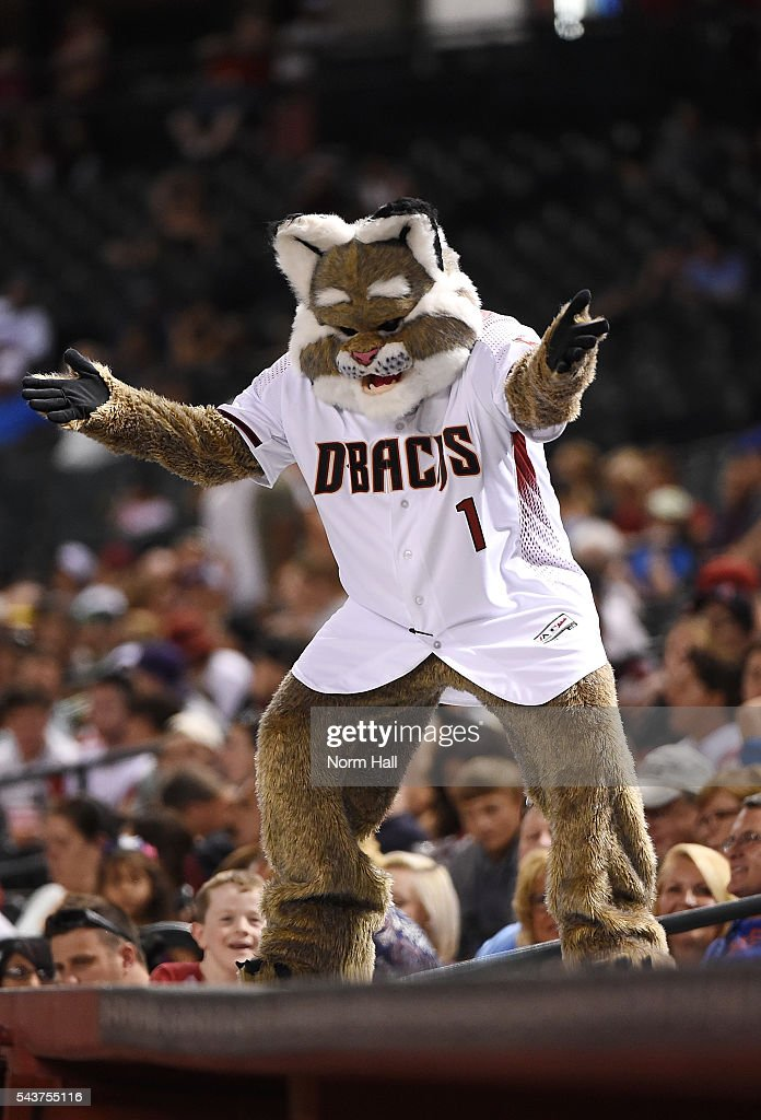 Arizona Diamondbacks mascot D Baxter reacts while standing on top of the Philadelphia Phillies dugout at Chase Field on June 27, 2016 in Phoenix, Arizona.