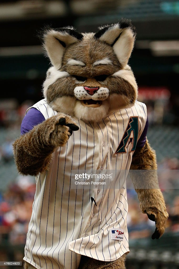 Arizona Diamondbacks mascot D Baxter the Bobcat during the MLB game against the New York Mets at Chase Field on June 4 2015 in Phoenix Arizona