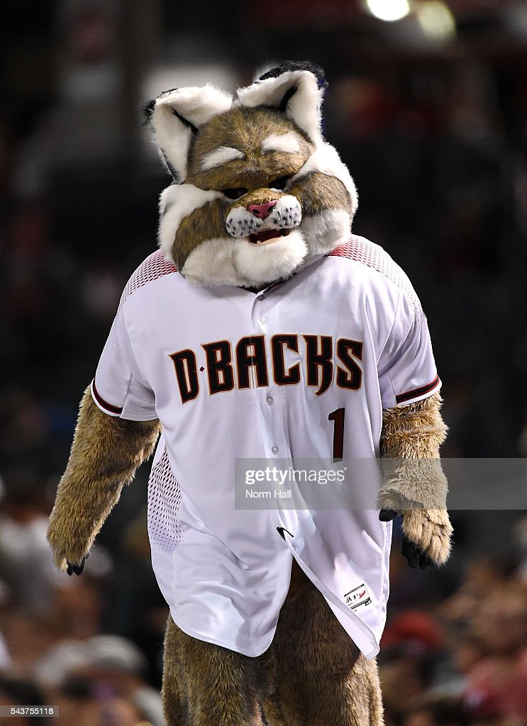 Arizona Diamondbacks mascot D Baxter walks on top of the Philadelphia Phillies dugout at Chase Field on June 27, 2016 in Phoenix, Arizona.