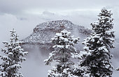 USA, Arizona, Grand Canyon, North Rim in snow