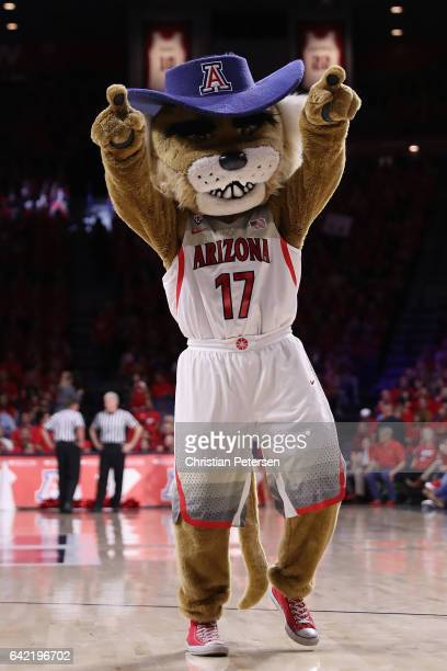 Arizona Wildcats mascot 'Wilbur' performs during the second half of the college basketball game at McKale Center on January 12 2017 in Tucson Arizona