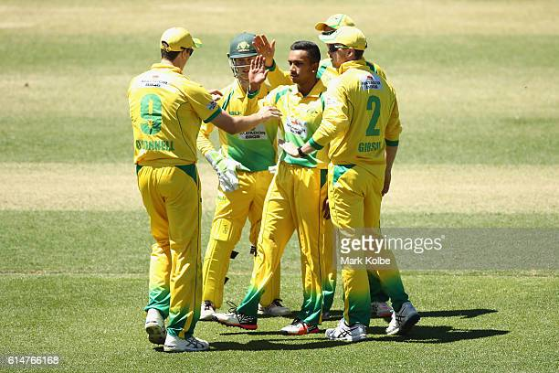 Arjun Nair of the Cricket Australia XI celebrates with his team mates after taking the wicket of Jake Weathered of the Redbacks during the Matador...