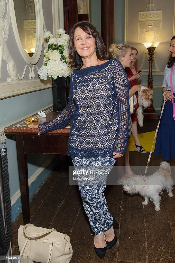 Arlene Philips attends the Dogs Trust Honours 2013 at Home House on July 23, 2013 in London, England.