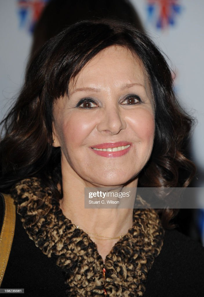 Arlene Phillips attends the after party for the press night of 'Viva Forever', a musical based on the music of The Spice Girls at Victoria Embankment Gardens on December 11, 2012 in London, England.
