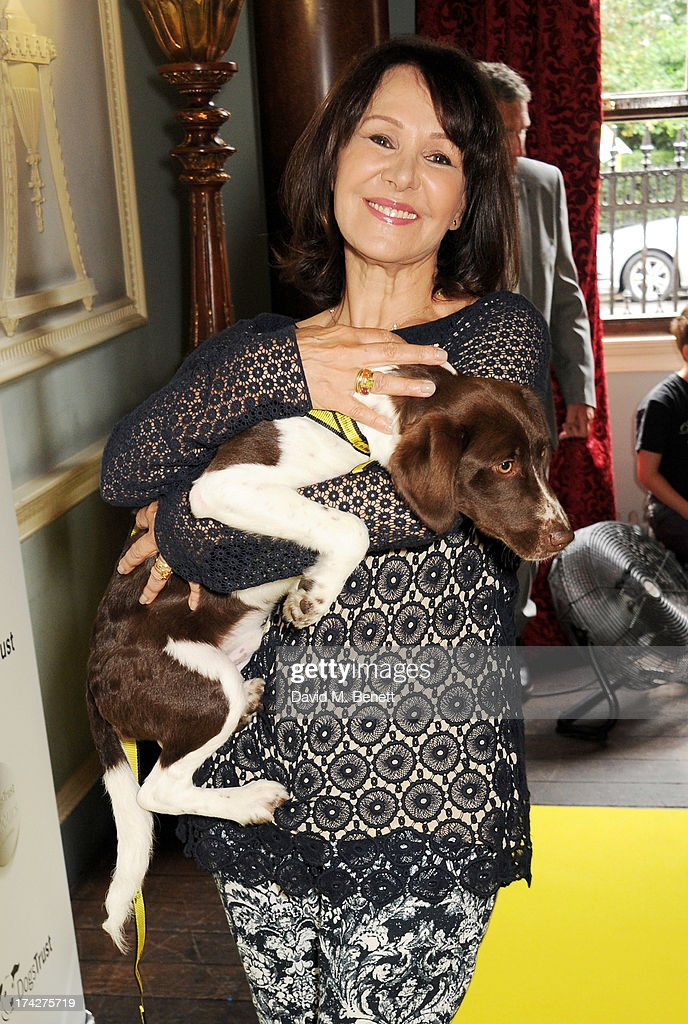 Arlene Phillips attends the Dogs Trust Honours held at Home House on July 23, 2013 in London, England.