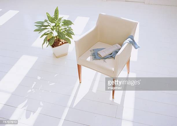 Armchair and plant
