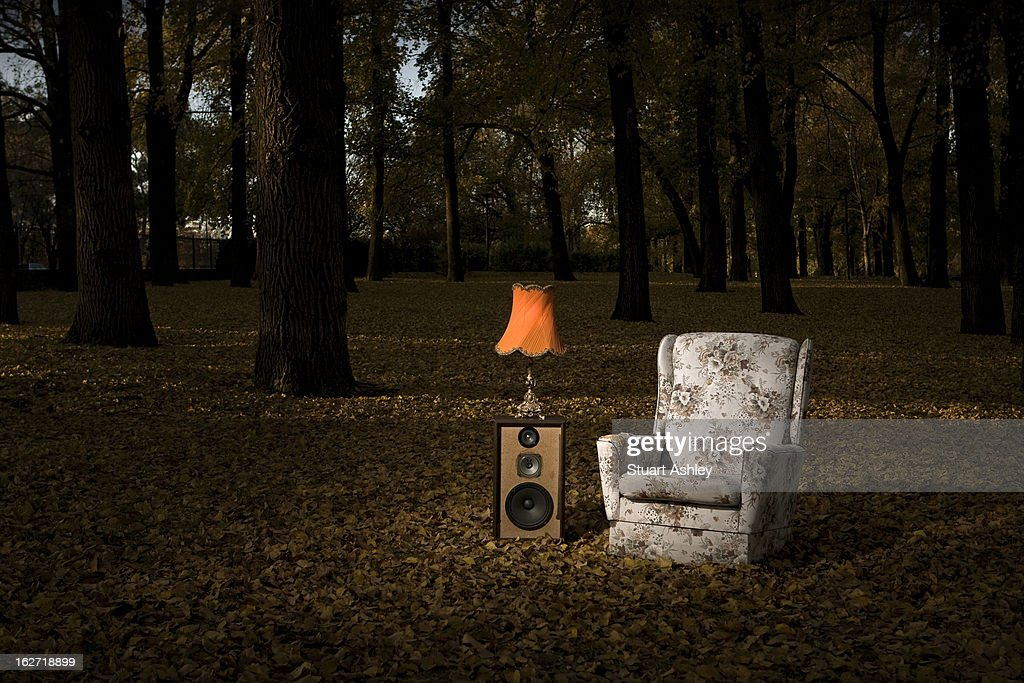 Armchair & Lamp in parkland : Stock Photo