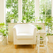 Armchair With Potted Plant